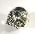 Skull5_2